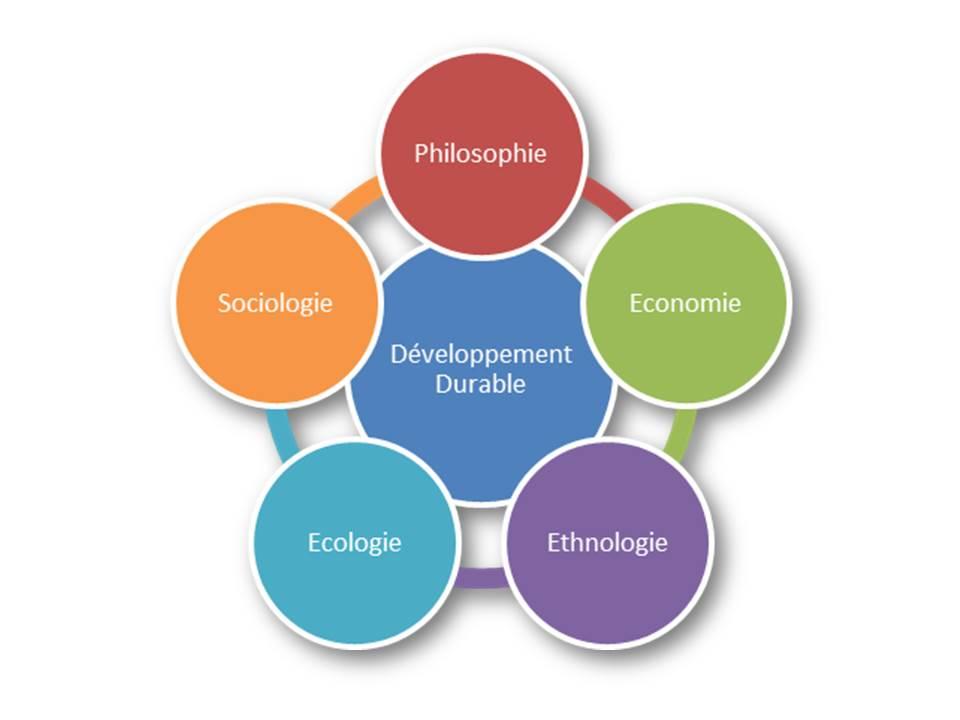 cercles développement durable